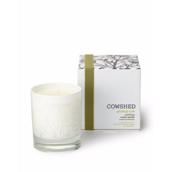 Grumpy Cow Uplifting Room Candle with box